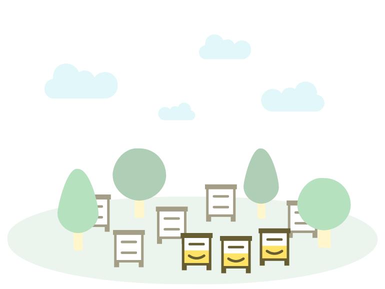 ruches en rucher partagé